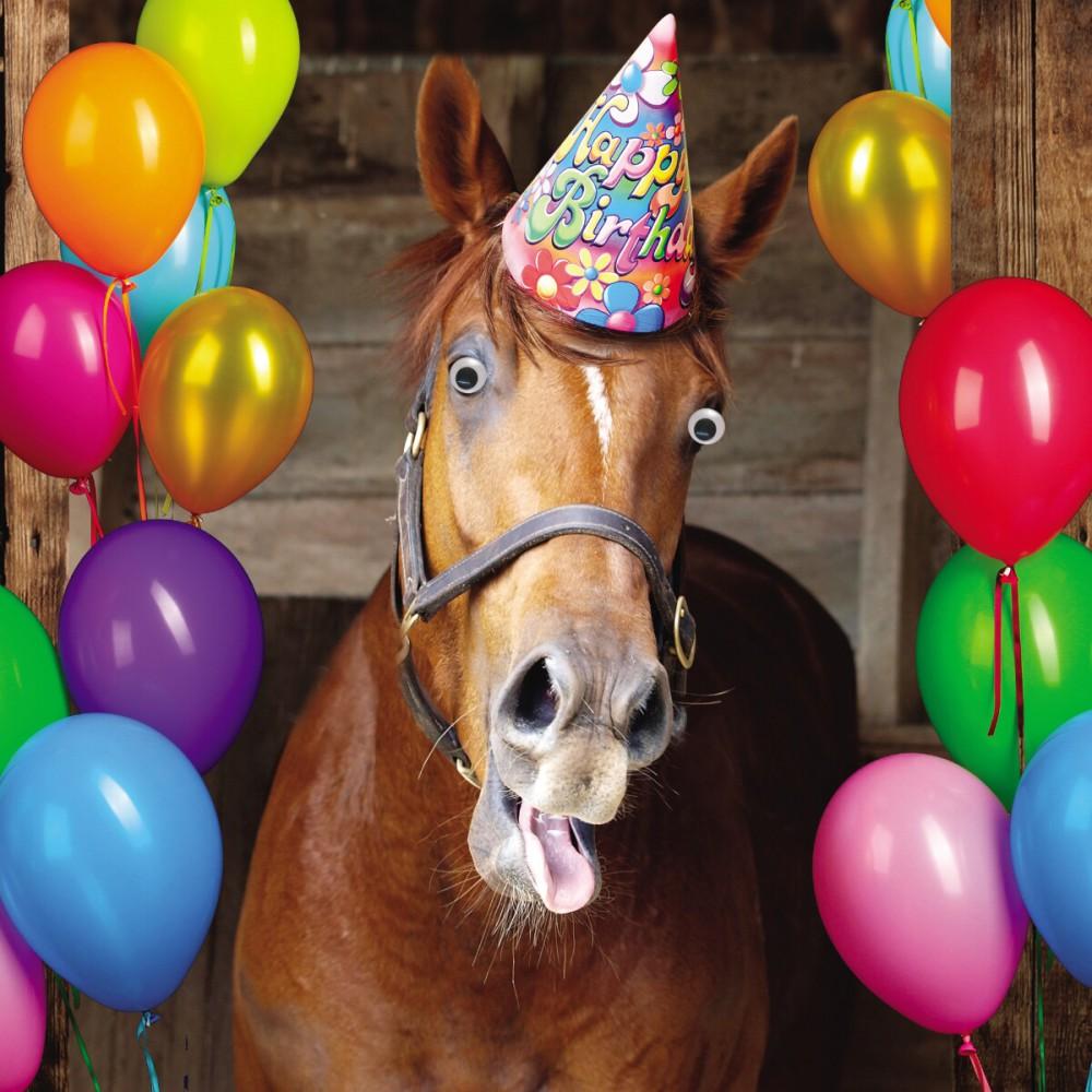 Geburtstag Humor Grußkarte Googlies PopShot Happy Birthday