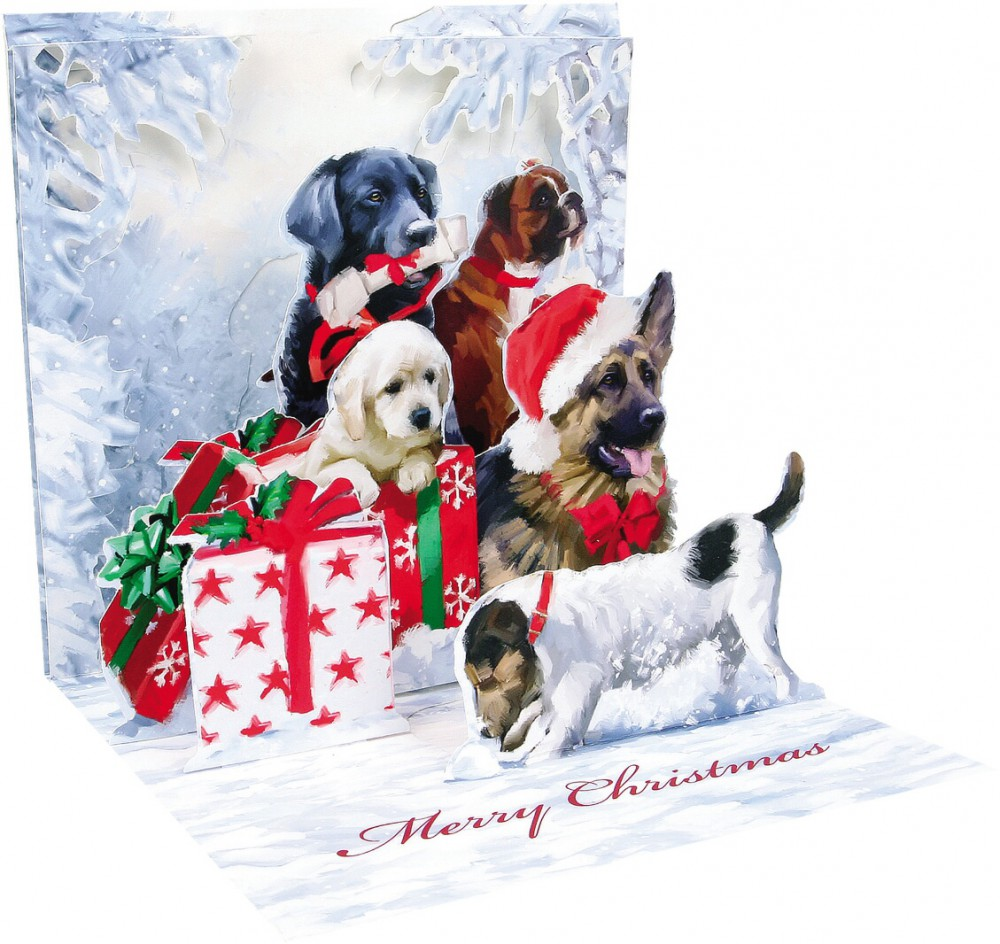 pop up 3d weihnachten karte popshot weihnachts hunde 13x13 cm. Black Bedroom Furniture Sets. Home Design Ideas