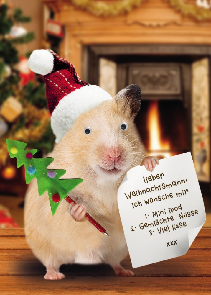 weihnachten humor gru karte googlies wackelaugen hamster. Black Bedroom Furniture Sets. Home Design Ideas